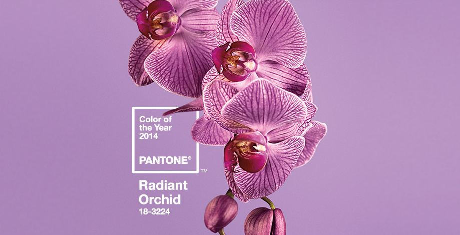 Pantone Names Color of the Year