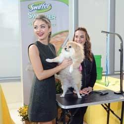 swiffer-and-sarah-hyland-support-aspca